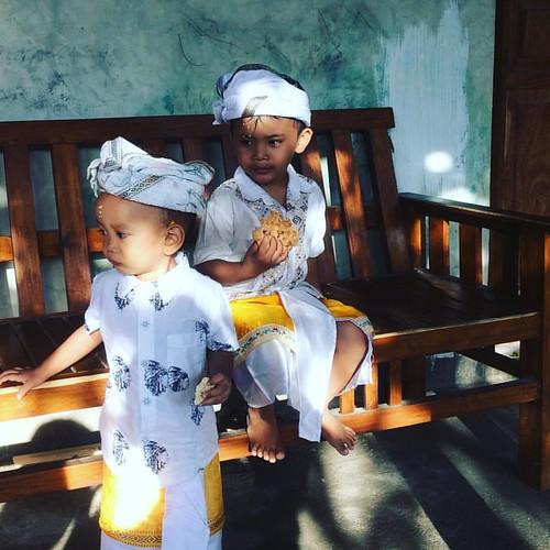 #tumpekkandang #Desa Suwug #Singaraja #Hindu #Bali #DamnILoveBali #mekebermelincer  #WawaWewe