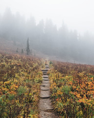 Naches Peak Trail (Alexander Tran | atranphoto.com) Tags: mount rainier national park nps100 goparks findyourpark atran atranphoto atranfoto pnw washington wa wash fog foggy rainy trail fuji fujifilm fujifilmxus xt1