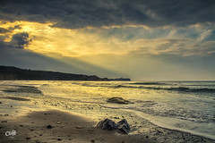 Aproaching Storm (Distinctive Digital) Tags: bay clouds sea shore water waves beach cayton coast england evening exterior headland landscapeorientation northyorkshire photoshopprocessed ripple sand seascapephotography summertime vignette wave
