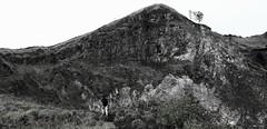 Mount Batur Hike 2 (richardha101) Tags: bali indonesia mountain mount batur hiking hike asia travel wanderlust bw blackandwhite nature outdoor