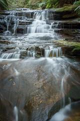 Leura Cascades (affectatio) Tags: waterfall waterfalls falls leuracascades leura bluemountains newsouthwales nsw sony a77mk2 a77ii zeiss 2470mm