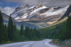 Autumn Drive In Canadian Rockies,  Icefields Parkway, Alberta, Canada (Feng Wei Photography) Tags: autumn color season rockymountains scenicdrive fall icefieldsparkway outdoor road horizontal travel forest scenic alberta landscape canada highway93 tourism canadianrockies scenery banffnationalpark ca