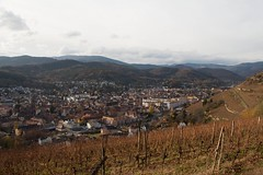 Guebwiller (Gisou68Fr) Tags: vignes vignoble guebwiller alsace hautrhin 68 france vines vineyard automne autumn fall 2016 canoneos650d efs18135mmf3556isstm