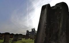 DSC_0898 copy_edited-1 (Mxziton) Tags: whitby abbey grave stone