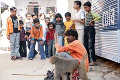 performing monkey (BDphoto1) Tags: india indians ethnic cultural traditional people children monkey performer show horizontal pushkar rajasthan outdoors streetphotography