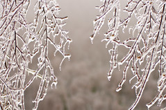 (Zinco.Foto) Tags: neve fanano ghiaccio zinco