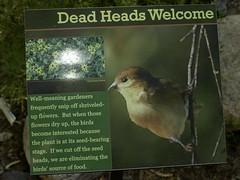 TBG welcomes you (Distraction Limited) Tags: arizona gardens geotagged tucson botanicalgardens deadheads tucsonbotanicalgardens tucsonbotanical geo:lat=32248214196629384 geo:lon=11090851103191187