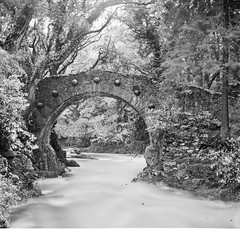 """""""Bridge of one rounded arch over river in woods, seven bosses round arch"""" = Foley's Bridge, Tollymore (National Library of Ireland on The Commons) Tags: bridge trees ireland river woods stream 19thcentury down northernireland bosses ulster stereoscope stonebridge tollymoreforestpark jameshami"""