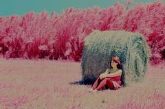 Esperas infrarrojas (santisss) Tags: film 35mm kodak ektachrome naranja infared expiredfilm eir filtro orangefilter 099 infraredcolor bw099 kodakexpired