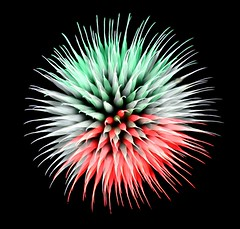Fuochi artificiali Varazze (alex.gan) Tags: firework fuochiartificiali