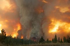 Inferno (gcquinn) Tags: california wild usa fire geoff yosemite quinn geoffrey largerthanlife rimfire onearthnrdc