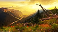 Nature Background, Wallpaper          (www.irandigitalworld.com) Tags: camera new winter sunset summer wallpaper mountain fall nature beautiful forest season photography design landscapes photo waterfall spring scenery background download psd  template         highquality           tehran02166570918 iranwwwidwir