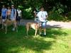 08-26-2012HornPond007