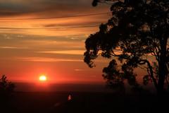 Sunrise from my Front Door (edwinemmerick) Tags: light sun tree rooftop silhouette sunrise canon eos linden australia bluemountains nsw 7d newsouthwales edwin emmerick edwinemmerick