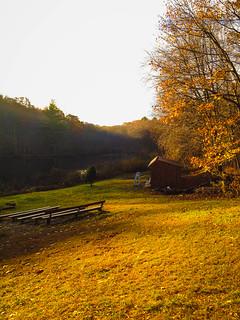 Fall Scene in the Northeast
