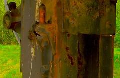 rusted: Trzapfen bunt am Frderturm in Zweckel, Galdbeck (Greyframe) Tags: door old texture contrast colorful iron mine kohle cole alt steel coke surface pit crack weathered coal frderturm rost kontrast verrostet farbe tr bunt zeche eisen historisch zapfen turbinenhalle verwittert bergwerk bergbau nieten schichten stahlbau anstrich stahel ptt schicht maschinenhalle