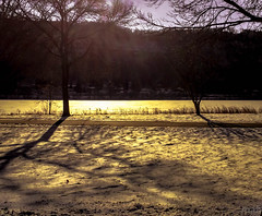 December Landscape (mahar15) Tags: park trees winter sunlight snow nature sunshine minnesota landscape midwest december afternoon winona