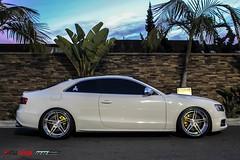 Audi S5 (MMLAurelius Images) Tags: slr