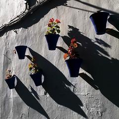 sehir / city  - SPAIN-CORDOBA (aksoyburcu) Tags: blue sun spain mediterranean south el andalucia arena spanish cordoba zil gl kontrast deniz beyaz mavi flamenco akdeniz matador gne glge scak boaz ispanya cordobes gney keskin al boa endls ispanyol cebelitark