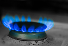 Day 8 (Allison Kufta) Tags: blue light stilllife monochrome canon fire photography january selectivecolor 2014 365project
