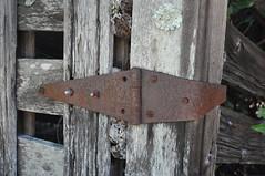 Rusty hinge (sfnighthawk) Tags: ranch hinge wood old barn nikon rust antique rusty