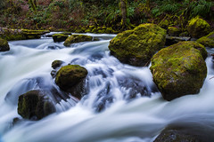 Winter Stream (mhitchner1) Tags: green nature rain forest canon river flow moss stream long exposure natural northwest mark iii smooth l 5d f4 silky 24105