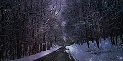 Starlight on the Reservoir Road (bjebie) Tags: road trees winter ohio snow nature beauty nightfall snowcovered starlight barrentrees mogadorereservoir mogadoreohio thereservoirroad