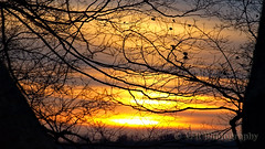 Bare-neckid tease (VFR Photography) Tags: trees winter sunset tree silhouette naked landscape twilight branch tn sundown tennessee bare branches january silhouettes sunsets southern thesouth limbs limb barren clarksville montgomerycounty smithtrahernmansion