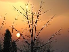 A bit of sunlight from the west (kontinova2) Tags: sunset day cloudy dusk mygearandme mygearandmepremium mygearandmebronze mygearandmesilver mygearandmegold mygearandmeplatinum flickrstruereflection1