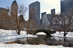 The Gapstow Bridge (Eddie C3) Tags: newyorkcity centralpark manhattan midtown gapstow midtownmanhattan canong1x