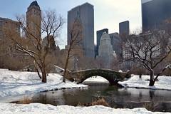 The Gapstow Bridge (Eddie C3) Tags: newyorkcity centralpark manhattan midtown gapstow midtownmanhattan canong1x