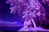 Infra Violet (Ludtz) Tags: wood longexposure pink blue trees summer sky mountain lake alps beach rose rock clouds montagne alpes canon switzerland purple violet lac bleu ciel arbres nuages leman 74 plage rocher forêt ambiance eté douvaine pauselongue 5dmkii canoneos5dmkii infraredseries ludtz ef1740 4l