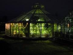 Greenhouses of the Kaisaniemi Botanic Garden in December darkness (Helsinki, 20131215) (RainoL) Tags: winter finland garden helsinki december darkness greenhouse u helsingfors botanicalgarden kaisaniemi uusimaa nyland 2013 kajsaniemi kaisaniemibotanicgarden 201312 20131215