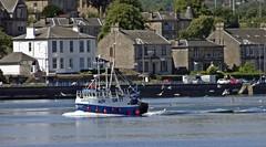 Cantona (Bricheno) Tags: seagulls river scotland riverclyde clyde greenock fishing escocia szkocja trawler schottland scozia cosse  esccia   bricheno guideus gk77 scoia