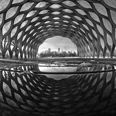 Chi-leidoscope (Explored!) (Seth Oliver Photographic Art) Tags: chicago reflections illinois nikon midwest lincolnpark pinoy chicagoskyline chicagoist d90 manualexposure setholiver1 peoplesgaspavilion rokinon8mm35fisheyelens
