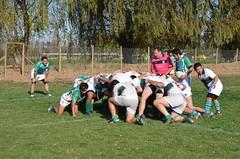 DSC_9069 (Rugby Old Green) Tags: rugby estacincentral arusa noviciado oldgreen