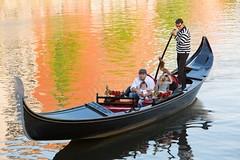 Family Gondola Rides