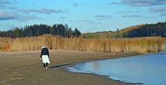 Lone Walker on the Shore (JohntheFinn) Tags: helsinki finland suomi europe eurooppa solitude yksinäisyys ranta shore beach water sea meri vesi itämeri baltic syksy autumn fall loneliness
