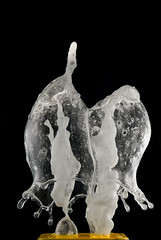 Pizzi &Merletti (Angelo M51 (Angelo Metauri)) Tags: angelom51 angelometauri splash drops fluids macro waterdrops water watersplash waterfigure watersculpture stilllife speed speedphotography