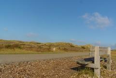 Lonely seat (Landleven (Irma Lit)) Tags: fietsreis vlielandlopik oktober2016 herfst bankje hippolytushoefegmond nikon1 nikon1v1 duinen schoorlbergen noordholland