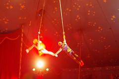 IMGP4826 (kanakacatherineb) Tags: cirque venise narbonne landri 2016 lions chameaux chiens dompteurs jongleur gymnaste