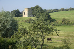 Ayton castle, North Yorkshire (Keartona) Tags: westayton eastayton aytoncastle castle england horse northyorkshire field green idyllic beautiful english tower medieval