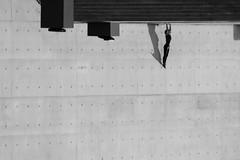 Gordon Gecko (Wackelaugen) Tags: person woman handstand berlin germany europe bundestag canon eos photo photography wackelaugen googlies black white bw blackwhite blackandwhite mono wall