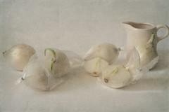 white onion (Button-NK) Tags: onion stilllife vegetable kitchen white