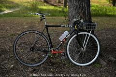 10 years on, it still has a long way to go (Brian McGloin) Tags: trackbike mercier fixedgear wald wirebasket bicycle austin singlespeed