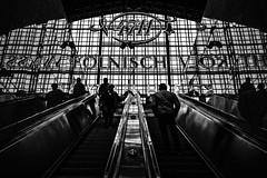 4711 (moltofredo) Tags: bw black white sw schwarz weiss noiretblanc monochrome street streetlife streetphotography kln bahnhof station spiegelung reflection kontrast