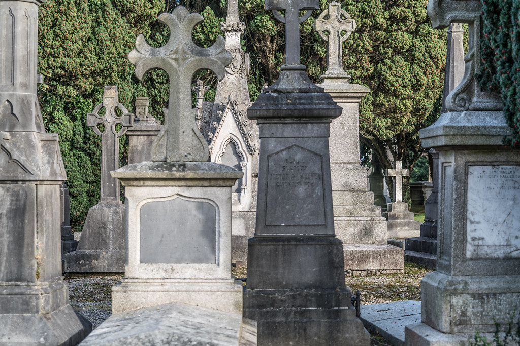 A QUICK VISIT TO GLASNEVIN CEMETERY[SONY F2.8 70-200 GM LENS]-122087