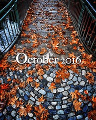 Octobre 2016  (Philippe Gillotte) Tags: instagramapp square squareformat iphoneography uploaded:by=instagram natureshots october octobre autumntime automne colors