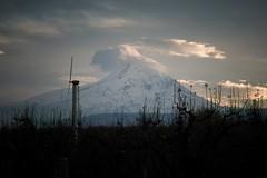 fan (LukeDetwiler) Tags: mthood hood hoodrivercounty hoodriver parkdale dee deeflat orchard oregon clouds cloud mountain nikon nikond3100 d3100