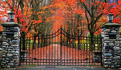 The Garden Gate (louelke - home again, will try to catch up) Tags: autumn countryfarm fallcolors washingtonstate gate entrance snoqualmie